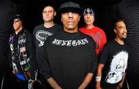 image of Hed Pe